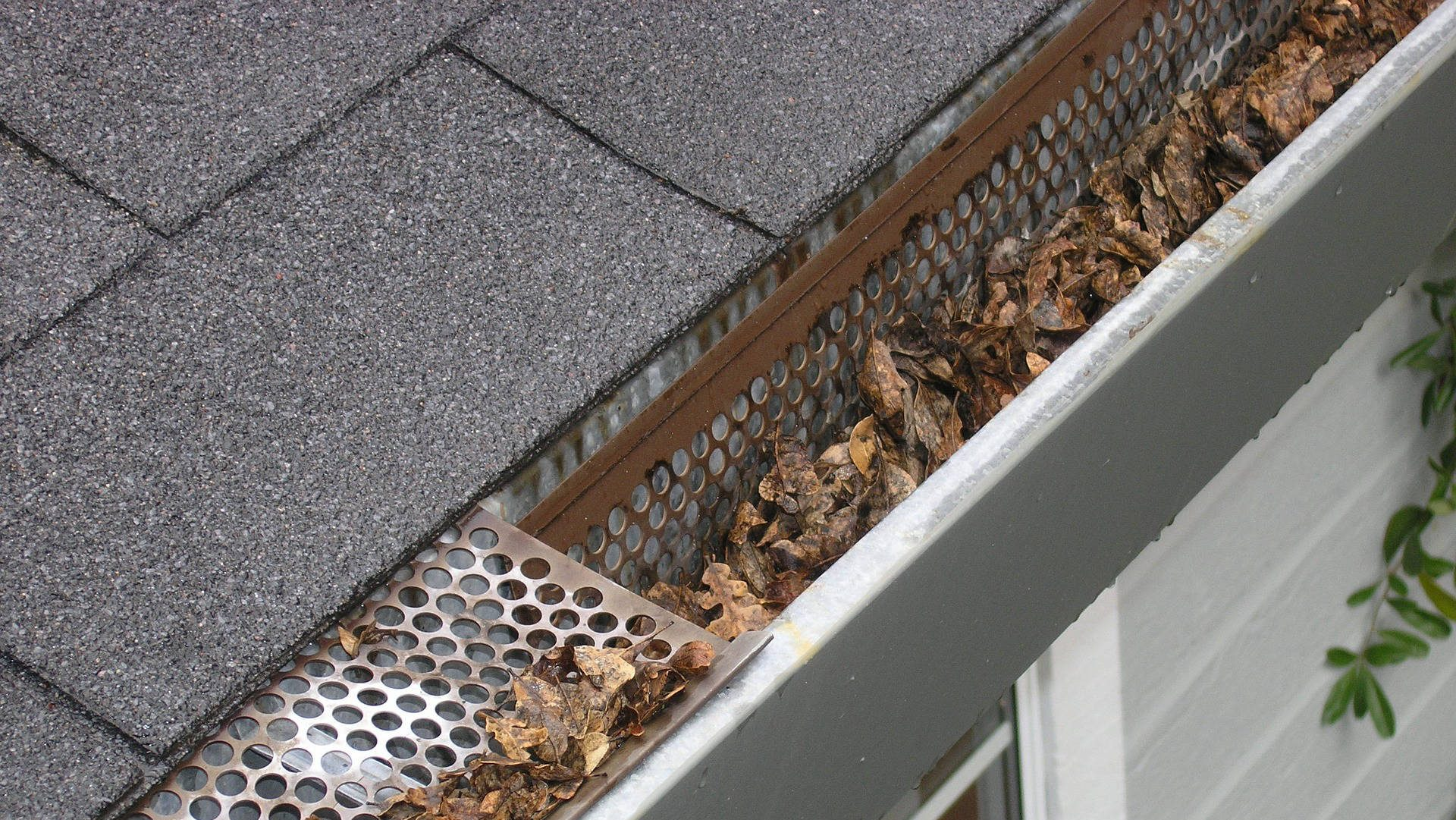 Header Image - Marin Gutter Cleaning and Maintenance